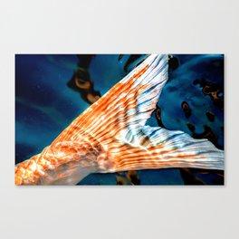 Tail End Canvas Print