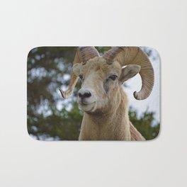 Big Horn Sheep in Jasper National Park Bath Mat