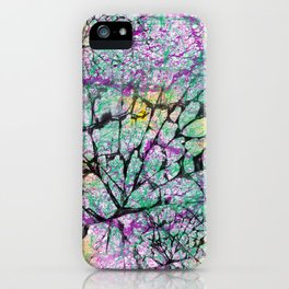 Colourfully Cracked iPhone Case
