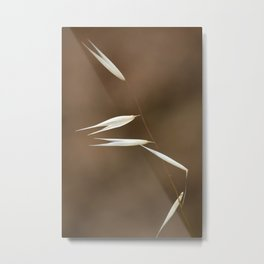 Wild Flora 7904 Metal Print