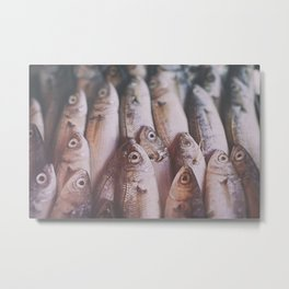 fish overload Metal Print