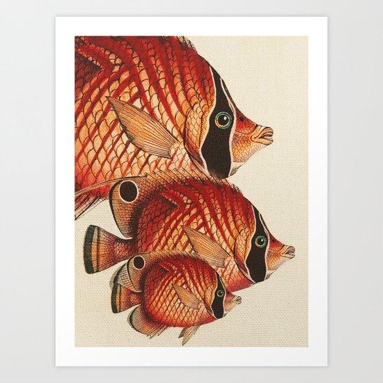 Fish Classic Designs 2 Art Print