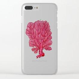 Venus red sea fan coral Clear iPhone Case