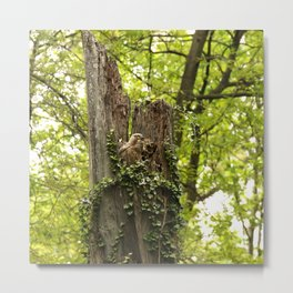 Mom could not believe her eyes Metal Print