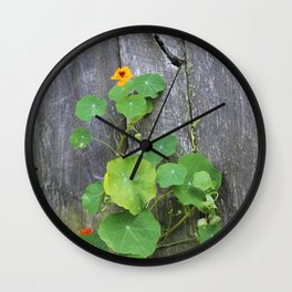 The Garden Wall Wall Clock