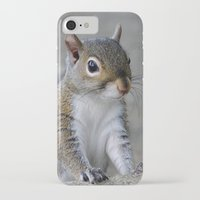 squirrel iPhone & iPod Cases featuring Squirrel by Charlene McCoy
