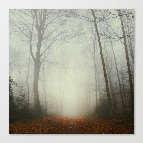fog trail Canvas Print