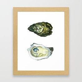 Watercolor Atlantic Oysters #1 by Artume Gerahmter Kunstdruck