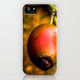 rot2 iPhone Case