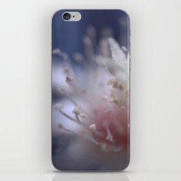 dreaming cactus iPhone Skin