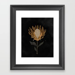 Dark Protea Flower Print Framed Art Print