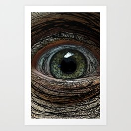 Linear Eye Art Print