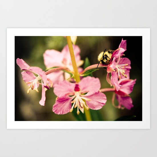Bee's Delight Art Print