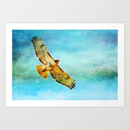 Golden Red Wing Flies the Blue Sky Art Print