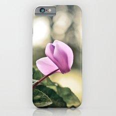 Ciclamino Slim Case iPhone 6s