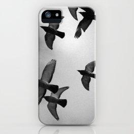 Doves VI iPhone Case