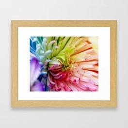 Kaleidscope Framed Art Print