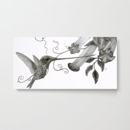 Swordbill Hummingbird Metal Print