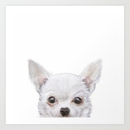 White Chihuahua Original painting print by Miart Art Print