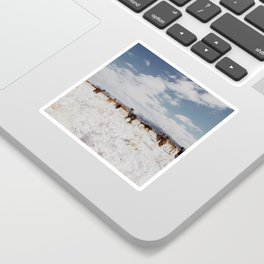 Field of Alpacas Sticker