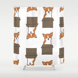 Corgi-in-a-box Shower Curtain