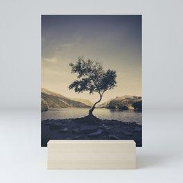 Tree at Llyn Padarn II Mini Art Print
