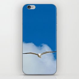 Solitary Seagull Bird Flying Sky Clouds iPhone Skin