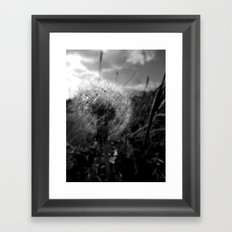 Soft Dandy Framed Art Print