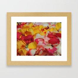 Rose Petals in Cuenca Framed Art Print