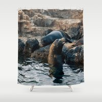 lions Shower Curtains featuring Sea Lions by Nick De Clercq