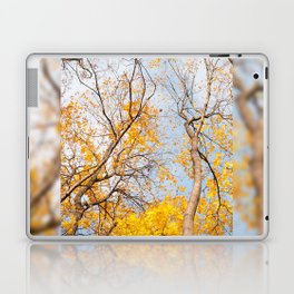 Yellow autumn leaves on trees in park Laptop & iPad Skin