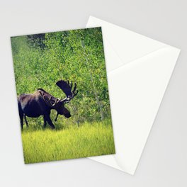 A grasing moose Stationery Cards