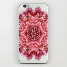 garden bulbs (pattern/pillow) iPhone & iPod Skin