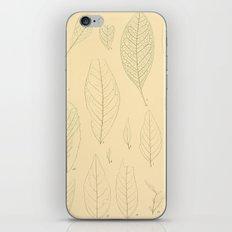 Ex. A iPhone & iPod Skin