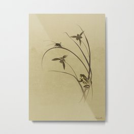 Orchid Sonata Metal Print