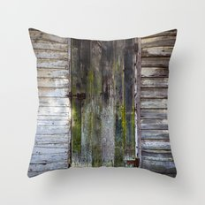 Antique Wood Door Throw Pillow