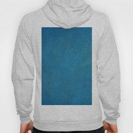 blue_logo Hoody