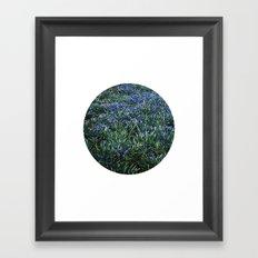 Planetary Bodies - Blue Flowers Framed Art Print