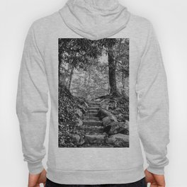 Rock Stairway Cades Cove Tennessee by Alli Gunter Photography Hoody