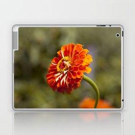 Orange Gerber Laptop & iPad Skin
