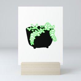 Sedum Plant Mini Art Print