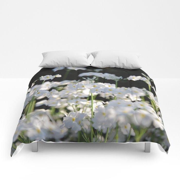 Naivety Comforters