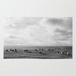 Sunlit sheep on a hilltop at sunset. Derbsyhire, UK. Rug