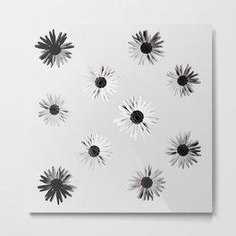 Shadow Box Flowers Metal Print