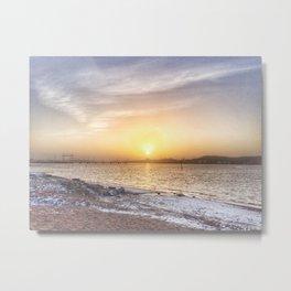 Soft colours under a weak sun Metal Print
