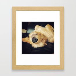 A Dog's Life Framed Art Print