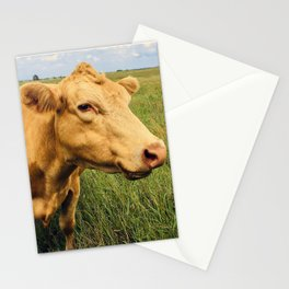 Blonde Cow Stationery Cards