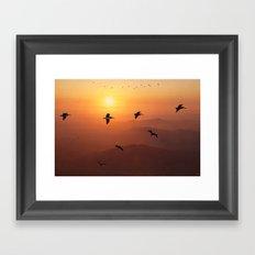 Pelican Migration Framed Art Print