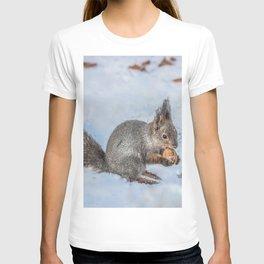 Hard nut to crack T-shirt