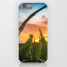 A view through the corn field at sunset iPhone Case